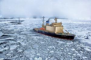 arctic-139393_640.jpg